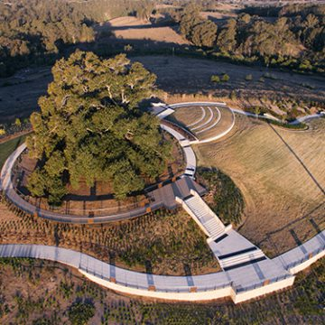 Emerald_Hills_Fig_Tree_Park
