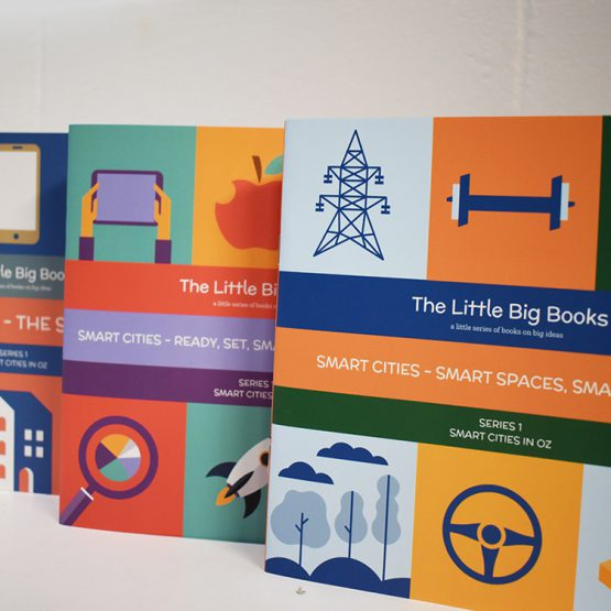 Little Big Books Series by Place Design Group